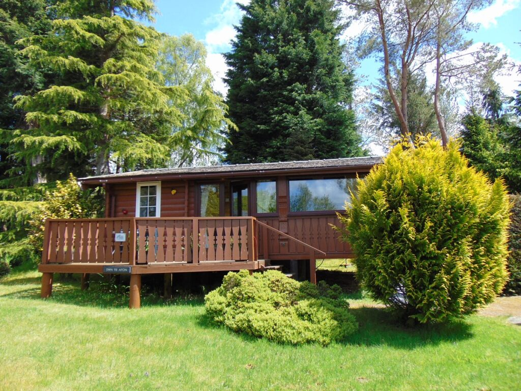Cabin 333